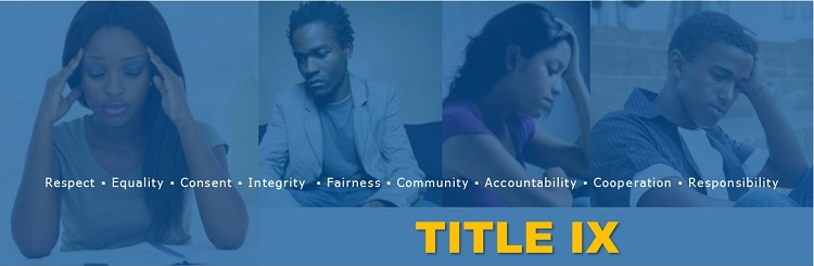 TITLE IX SUPPORT SERVICES